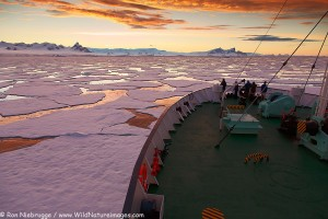 Icebreaker Ortelius moving through ice at sunset / sunrise as we travel below the Antarctic Circle, Antarctica.