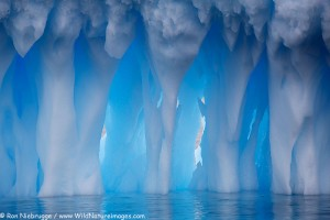 Icebergs at Brown Bluff, Antarctica.