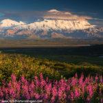 Traversing Alaska