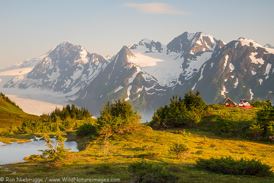 Campsite way above the Spencer Glacier, Chugach National Forest, Alaska.