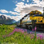 Alaska Railroad Grandview