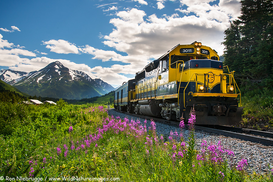 Alaska Railroad at Grandview, Alaska.