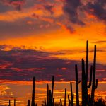 Sunset – Arizona Style