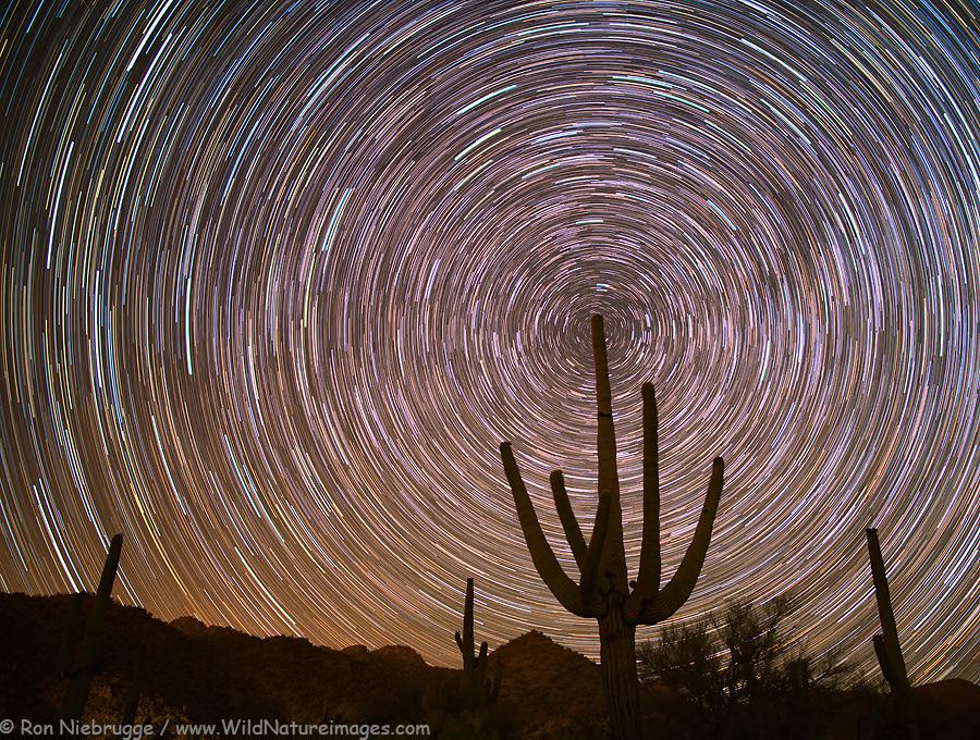 Star trails in the Tortolita Mountains, near Tucson, Arizona.