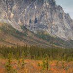 Alaska Autumn