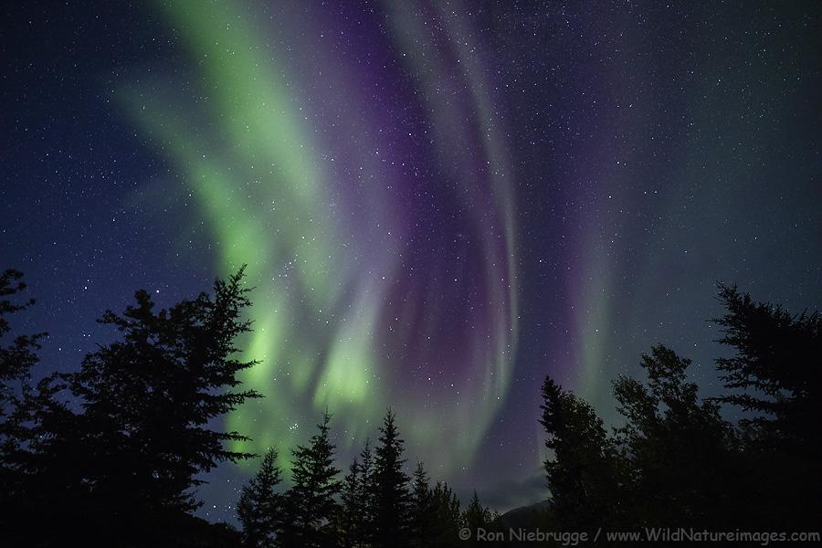 Aurora borealis, Alaska Brooks Range, Alaska.