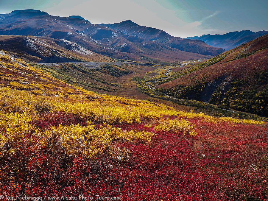 Autumn in the Brooks Range, Alaska.