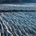 Kenai Fjords National Park Photo Tour