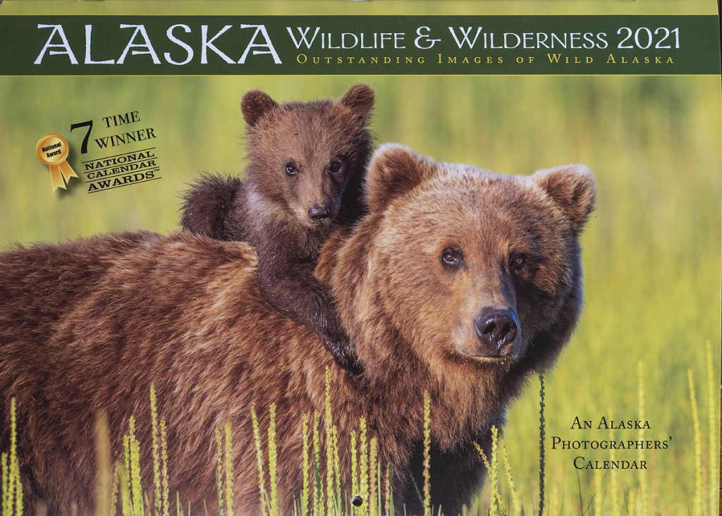 Brown bear sow and cub, Lake Clark National Park, Alaska.