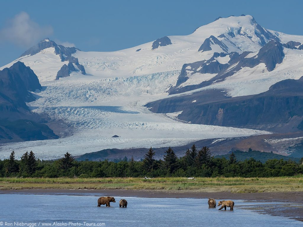 Hallo Bay, Katmai National Park, Alaska.