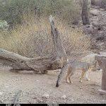 Desert Photo Retreat Checkin